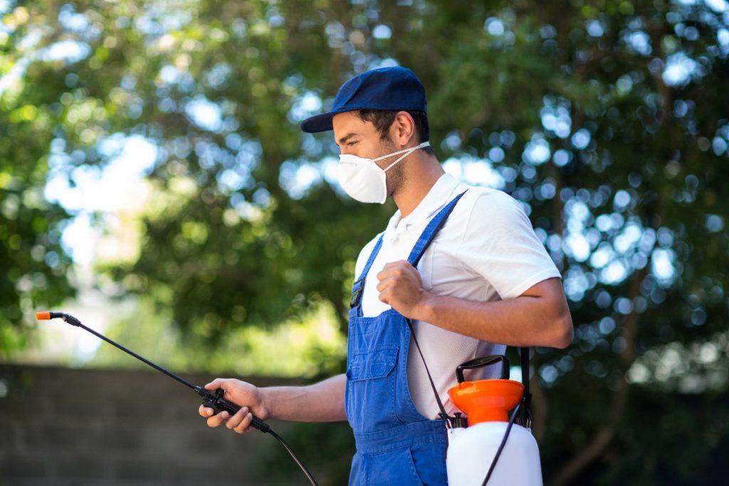 exterminator removing pests