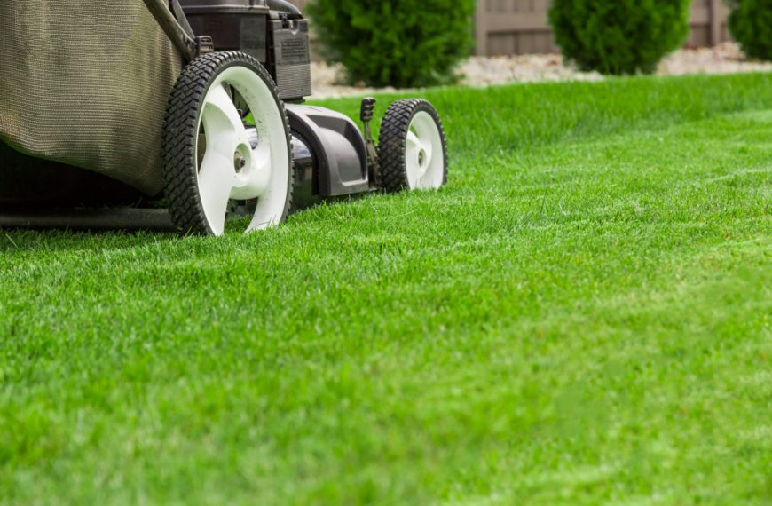 Five Ways to Easily Manage a Large Lawn